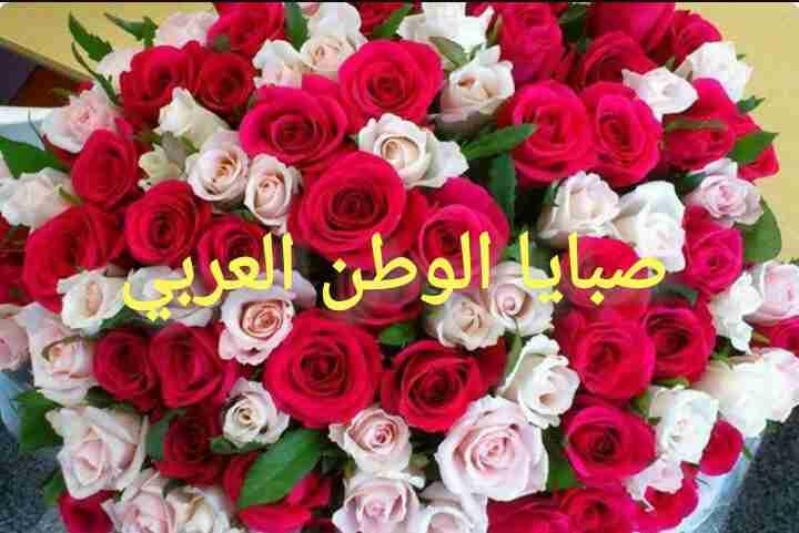 جروب صبايا الوطن العربي
