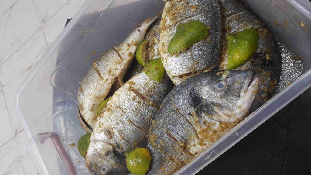 سمك دنيس قلي ملكة رمضان