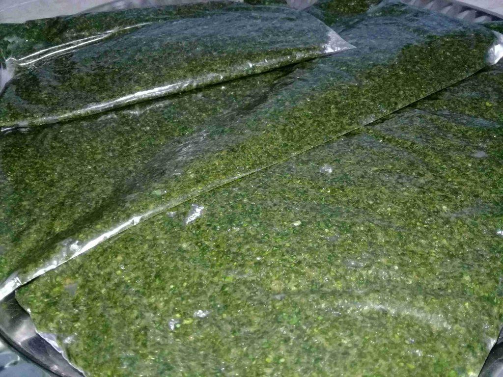 تفريز الملوخيه الخضراء
